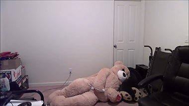 Teddy Bear being Naughty